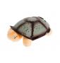 Svietiaca plyšová korytnačka malá hnedá