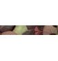 Živicové nálepky ku kľučkám TUPAI VARIO - Autumn Leaves